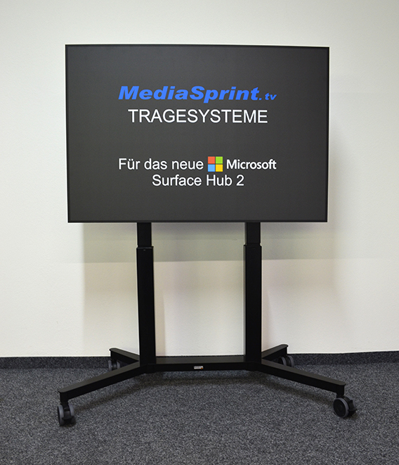 Display Mobil 3030 T mit Case